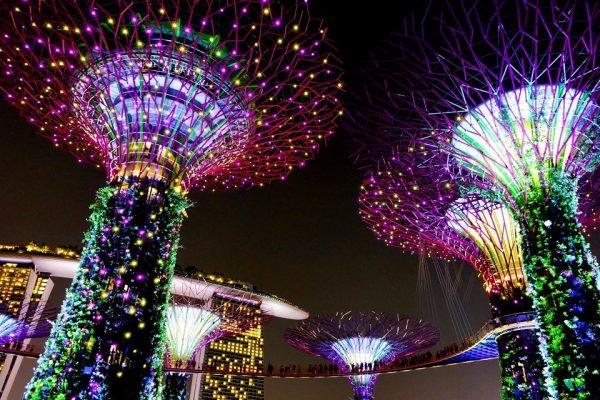 tour-singapore-5